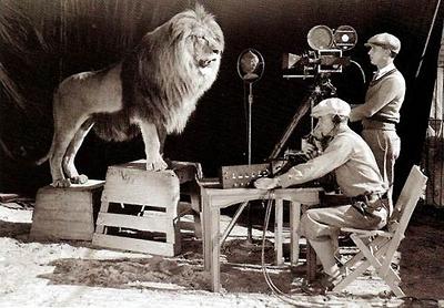Slats the lion