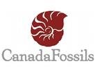Canada Fossils