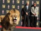 Отпечатки лап льва из MGM на Алее славы в Голливуде
