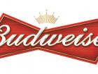 10 интересных фактов о Budweiser
